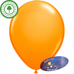 30cm Orange Balloon